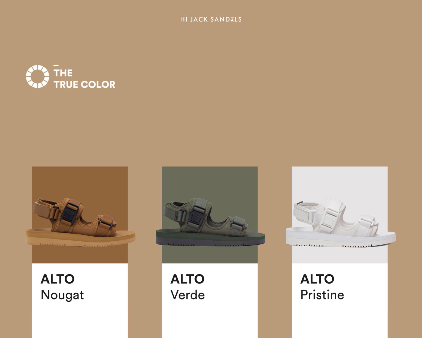 The True Color – ALTO