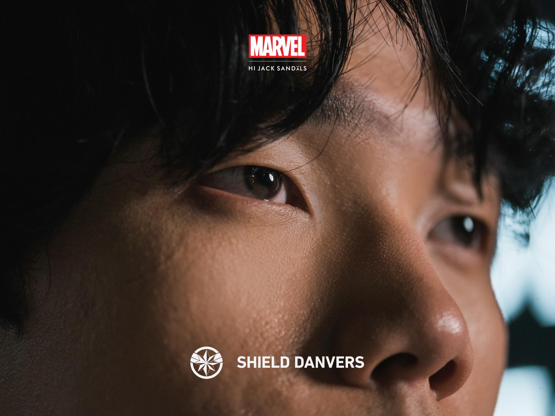 SHIELD DANVERS